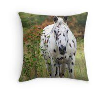 Beautiful Appaloosa!!!!!!!! Throw Pillow