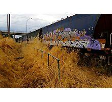 graffiti train Photographic Print