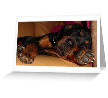 Rottweiler's Rest Greeting Card