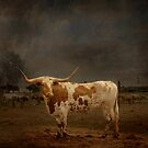 Texas Long Horn by Paul Vanzella