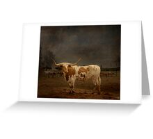 Texas Long Horn Greeting Card