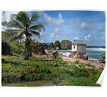 Love Shack, Barbados Poster