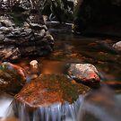 Cascade on Dove River by Donovan Wilson