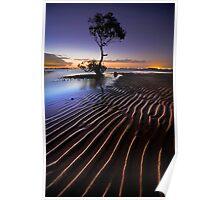 Everyones Tree Poster