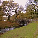 Dartmoor: Norsworthy Bridge by Rob Parsons