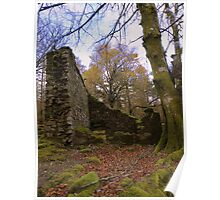 Dartmoor: Leather Tor Farm Ruins Poster