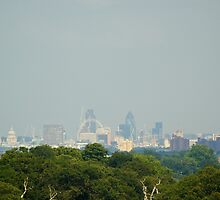 The City of London from Richmond Park by tonemonkey