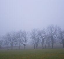 Misty Morning Three by debsrockine
