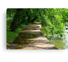 Washington trail Canvas Print