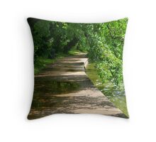 Washington trail Throw Pillow