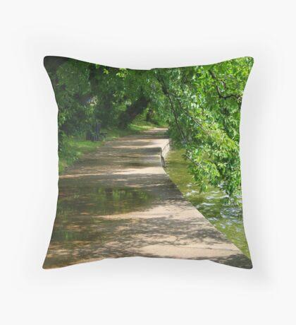 Washington trail Throw Pillow