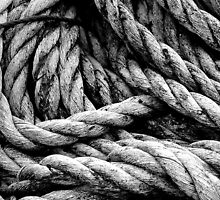 Old Rope by Stephen Maxwell
