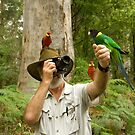 Bird Photography Western Australia Style by Ron  Long