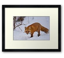 Recovery Framed Print