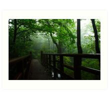 Misty Day - Jirisan National Park, South Korea Art Print