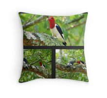Red Headed Woodpecker Feeding His Young Throw Pillow