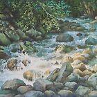 Carpathian River by Vera Kalinovska
