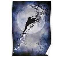 Midnight dream Poster