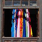 Window Shopping by ragman