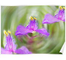 Flowers dream. Poster