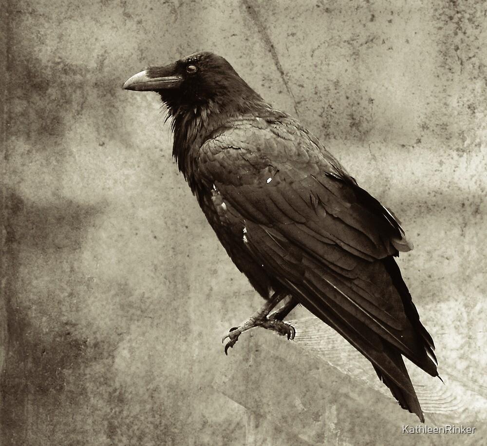 Raven by KathleenRinker