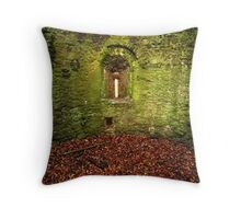 Aged Walls of Usk Castle Throw Pillow
