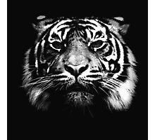 Illustrated Tiger  Photographic Print