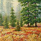 morning colors by edisandu
