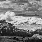Thundering surf near Kaikoura by Roger Neal