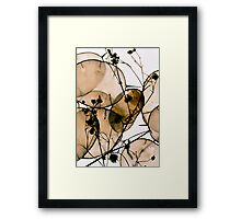 Natural Honesty Framed Print
