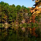 Autumn Reflections by Phillip M. Burrow