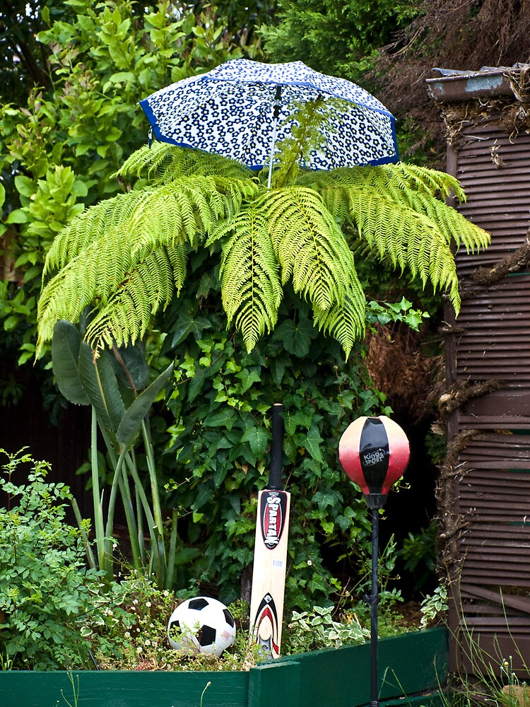 Sporty Fern on a Rainy Day by Pascal and Isabella Inard