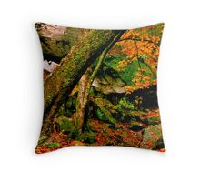 Angel Walk Throw Pillow