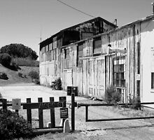 Hope Street, Alviso, San Francisco Bay Area by Igor Pozdnyakov