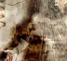 Crown Of Thorns - Stigmata by SquarePeg