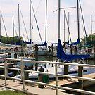 Safety Harbor Marina  by Ilene Clayton