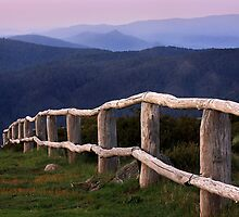 High country fence - Mt Strirling by Hans Kawitzki