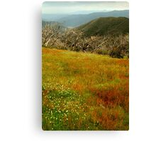 Colours Of The Victorian High Country Canvas Print