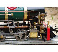 the train  Photographic Print