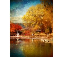 The Colourful Conclusion of Autumn Photographic Print