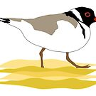 Hooded Plover endangered Australian shore bird. by rodesigns