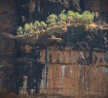 Nourlangie Rock cliffs, Kakadu NP, NT by Speedy