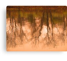 do they watch themselves in natures mirror? Canvas Print