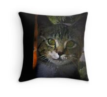 Wotcher Doin' In There? Throw Pillow
