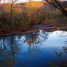 Sundown Ya Better Take Care by NatureGreeting Cards ©ccwri