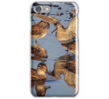 Dowitchers  iPhone Case/Skin
