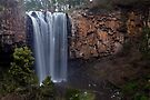 Trentham Falls (Victoria's highest?) by Travis Easton