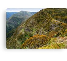 High Country Views Canvas Print