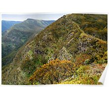 High Country Views Poster