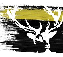 House Baratheon by BodmerR